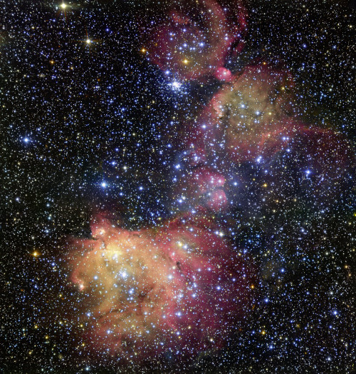 In this image from ESO's Very Large Telescope (VLT), light from blazing blue stars energises the gas left over from the stars' recent formation. The result is a strikingly colourful emission nebula, called LHA 120-N55, in which the stars are adorned with a mantle of glowing gas. Astronomers study these beautiful displays to learn about the conditions in places where new stars develop.