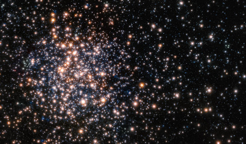 Peering through the thick dust clouds of the galactic bulge an international team of astronomers has revealed the unusual mix of stars in the stellar cluster known as Terzan 5. The new results indicate that Terzan 5 is in fact one of the bulge's primordial building blocks, most likely the relic of the very early days of the Milky Way. This picture is from the Multi-Conjugate Adaptive Optics Demonstrator (MAD), a prototype adaptive optics system used to demonstrate the feasibility of different techniques in the framework of the E-ELT and the second generation VLT Instruments. The star colours are from the Hubble image of the same star field.