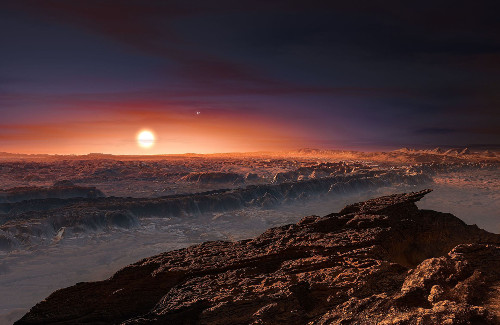 proximab_reduced